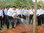 Lancement de la Fête de plantation d'arbres du Printemps At Mui 2015