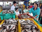 Kien Giang exporte pour près de 60 millions de dollars en janvier et février