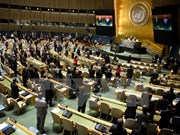 Conseil des droits de l'homme : le Vietnam soutient le dialogue et la coopération