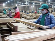 Ouverture de la foire des articles en bois VIFA EXPO 2015 à HCM-Ville