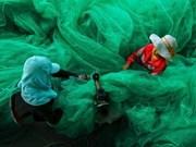 Un photographe vietnamien primé au concours Smithsonian
