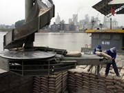 Les stocks de matériaux de construction demeurent élevés