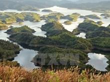 La beauté impressionnante de la réserve naturelle de Ta Dung dans les Hauts Plateaux du Centre