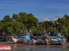 La commune insulaire de Thanh An fait peau neuve