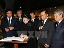 Une délégation vietnamienne rend hommage au leader cubain Fidel Castro