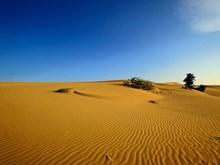 La séduction cachée de la dune de Nam Cuong