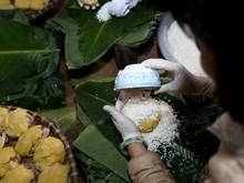 Tranh Khuc, village de confection du Banh chung