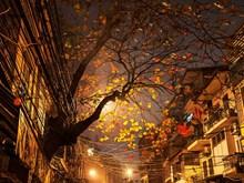 Un petit coin de Hanoï en images
