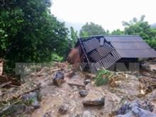 Le Japon au chevet des localités vietnamiennes touchées par les inondations