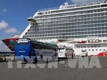 Da Nang valorise ses potentiels de tourisme de croisière