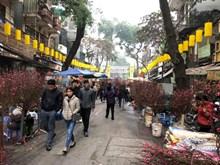Hang Luoc, marché aux fleurs du printemps