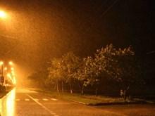 Nghe An se concentre sur le règlement des conséquences laissées par la tempête No3
