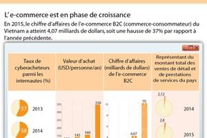[Infographie] L'e-commerce en forte croissance au Vietnam