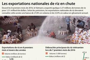 Les exportations nationales de riz en forte baisse