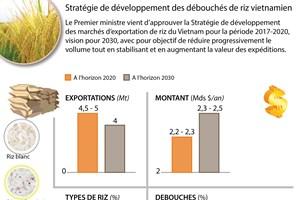 Stratégie de développement des marchés pour le riz vietnamien
