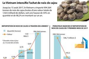 [Infographie] Le Vietnam intensifie l'achat de noix de cajou