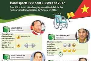 Handisport: ils se sont illustrés en 2017