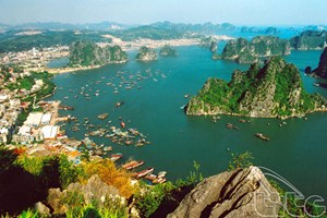 Alliance pour protéger la baie de Ha Long et l'archipel de Cat Bà