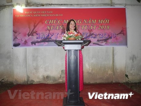 La communauté des Vietnamiens à l'étranger salue le Nouvel An lunaire 2018