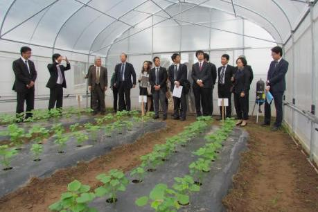 Agriculture le japon sonde des opportunit s d for Le commerce exterieur du japon